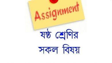 Class 6 Assignment Answer
